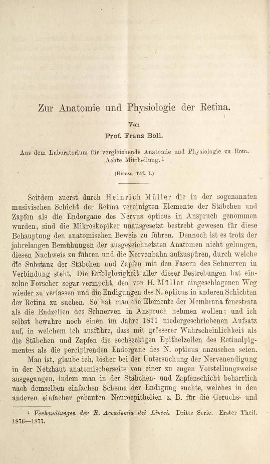 Ausgezeichnet Retinale Anatomie Und Physiologie Ideen - Menschliche ...
